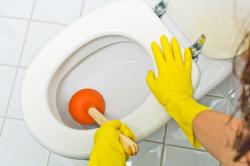 toilette verstopft tipps zum reinigen des wcs. Black Bedroom Furniture Sets. Home Design Ideas